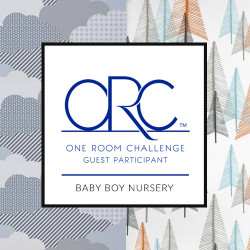 One Room Challenge: a baby boy nursery