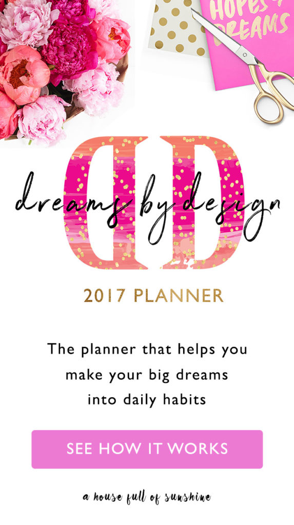 Dreams by Design planner 2017